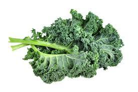 organic tuscan kale